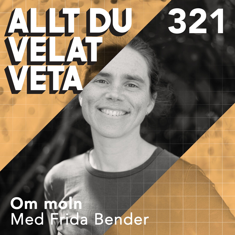 321 Om moln med Frida Bender