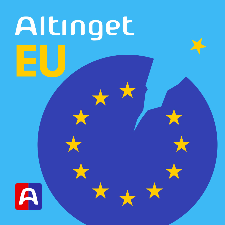 Europas ledere samles for at tale om både indre og ydre grænser