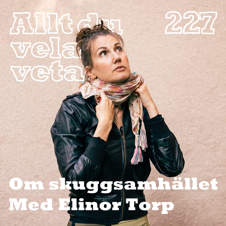 227 Allt du velat veta om skuggsamhället med Elinor Torp