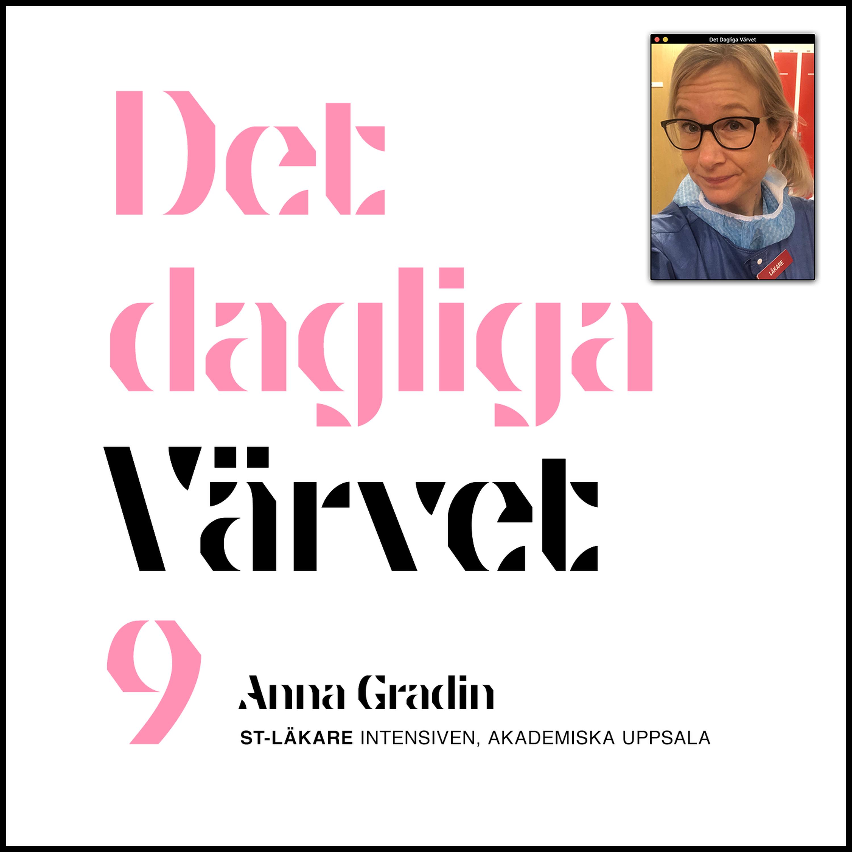 DET DAGLIGA VÄRVET #9 Anna Gradin