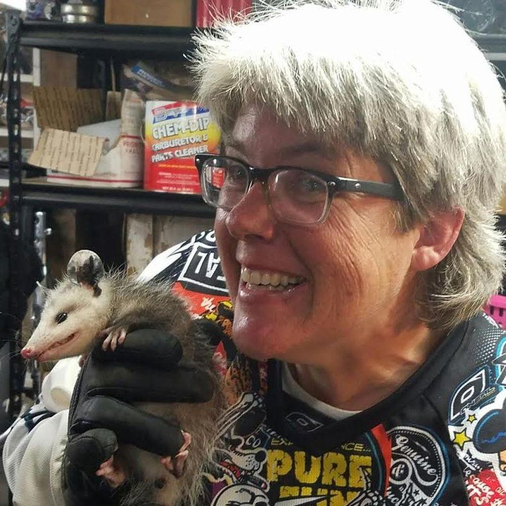 Podcast 205: Possum Interruption Take 2 | Motorcycles