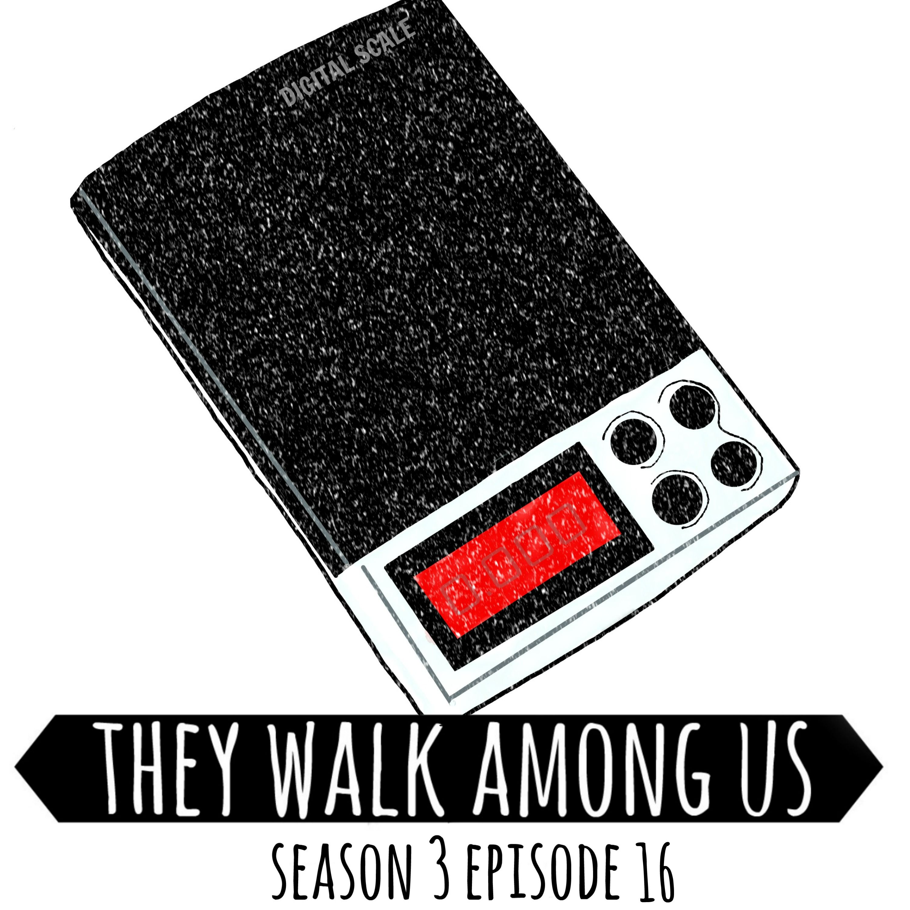 Season 3 - Episode 16