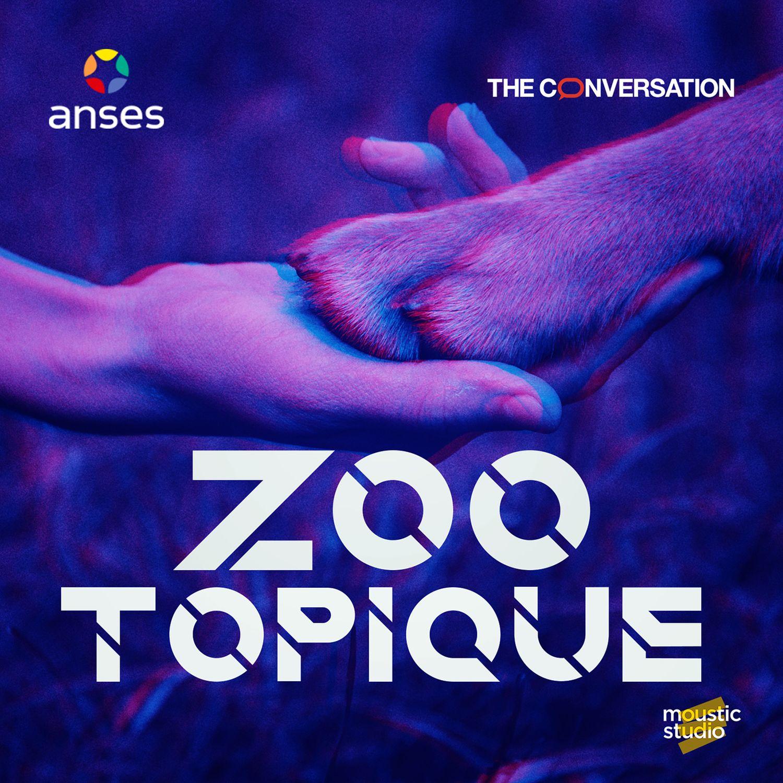 Zootopique