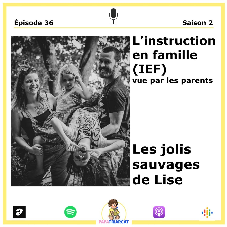 #36 - IEF - Les jolis sauvages de Lise Desportes