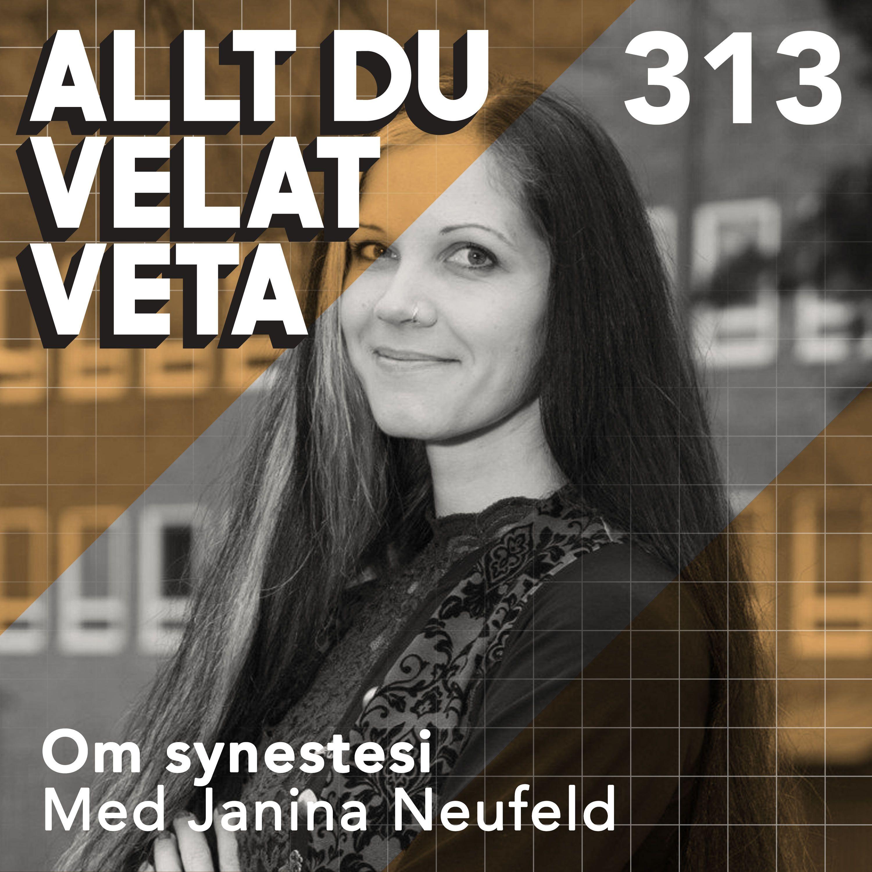 313 Om synestesi med Janina Neufeld