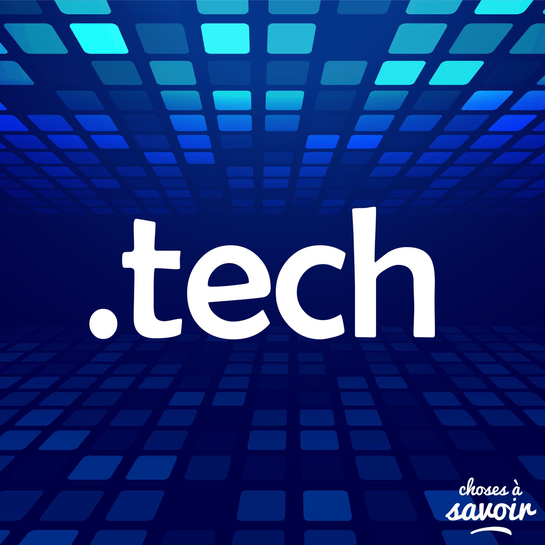 Pourquoi le métaverse passionne-t-il les géants de la Tech ?